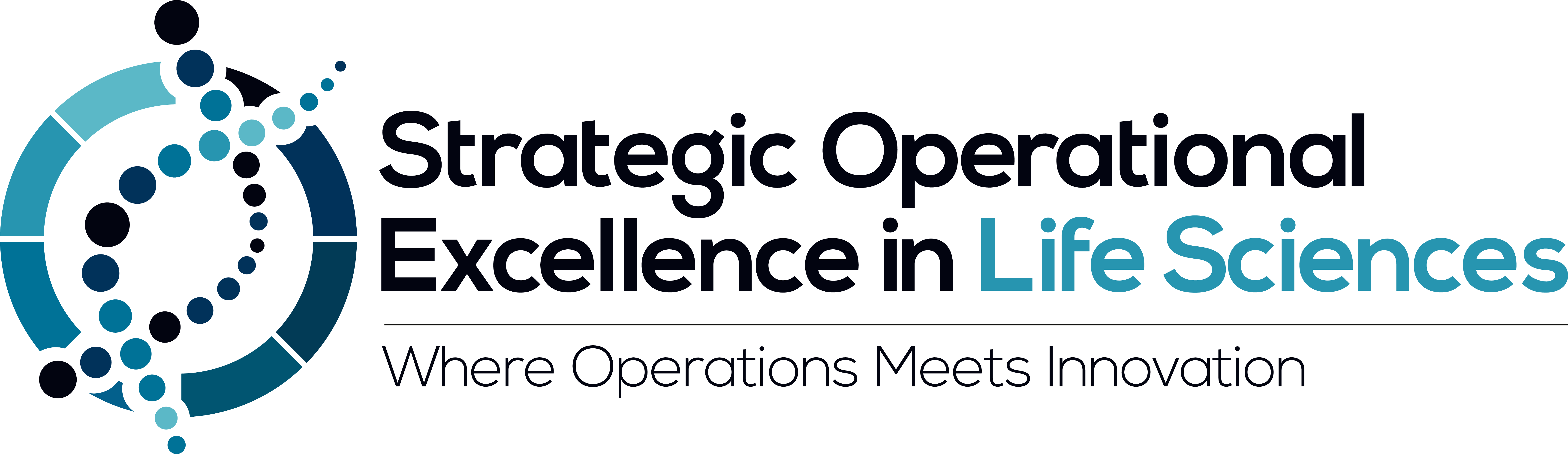 21222 - Strategic Operational Excellence in Life Sciences logo